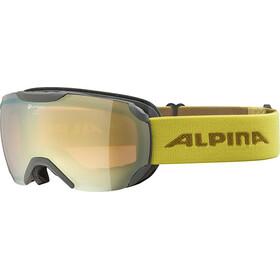 Alpina Pheos S QHM Gafas, grey/curry
